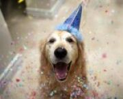 10 Ways To Celebrate After Taking The GMAT