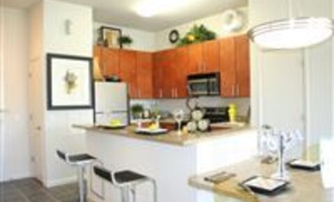 Apartments Near UCF 1251 Lee Rd for University of Central Florida Students in Orlando, FL