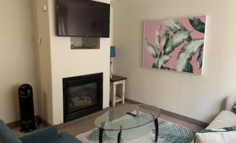 Apartments Near UCLA PRIVATE FURNISHED MICRO 1 BEDROOM STEPS FROM THE BEACH WITH PARKING! for University of California - Los Angeles Students in Los Angeles, CA