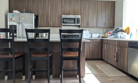 Apartments Near SDSU $900 9/1/20 : Private bedroom in brand new luxury townhome for San Diego State University Students in San Diego, CA