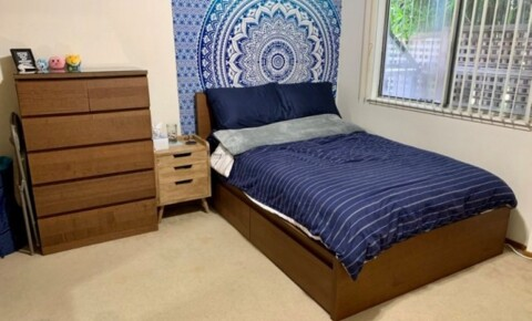 Sublets Near Golden Gate [Furnished Summer Sublet] SINGLE ROOM AVAILABLE for Golden Gate University Students in San Francisco, CA