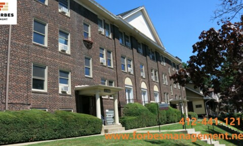 Apartments Near PITT Aug 1st! Heart of Squirrel Hill, Updated Kit w/DW, Hardwood Flrs for University of Pittsburgh Students in Pittsburgh, PA
