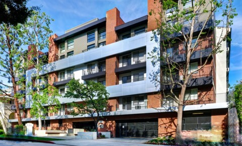 Apartments Near CSULA El Greco Lofts for California State University-Los Angeles Students in Los Angeles, CA