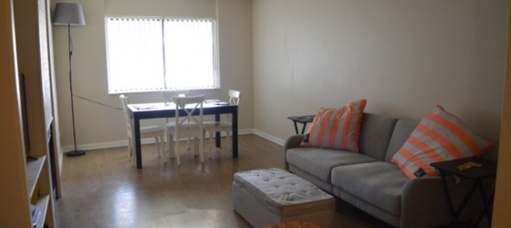 Furnished 1 bedroom sublet available August 2019 - May 2020.