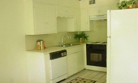 Apartments Near UT Austin 2204 Enfield Rd for University of Texas - Austin Students in Austin, TX