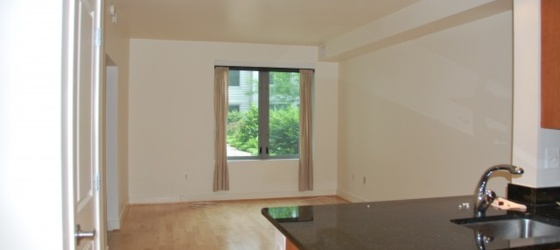 Cityline at Tenley -- Jr. One Bedroom